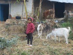 2014新春、ネパール旅行記(11)1月23日(2):ナガルコットの見学を終えてパタンの町へ