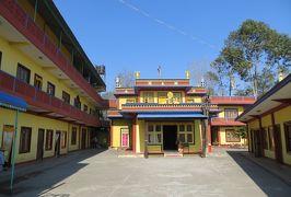 2014新春、ネパール旅行記(28)1月25日(4):ポカラ、チベット難民キャンプ、チベット仏教寺院、デビット・フォール