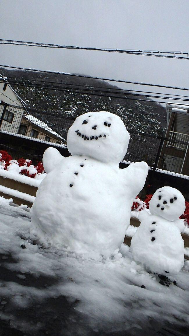 2月8日の岡山は前夜からの雪が降り積もり、8cmの積雪となりました。<br />1994年2月12日の9cm以来、20年ぶりの大雪です。<br />岡山県南部での大雪はきわめて珍しいため、子どもたちはもちろん、大学生たちも各所で雪だるまを作っていました。<br />もっとも、氷点下での降雪となった関東地方とは異なり、岡山市の最低気温は0.2度どまり。また、日中には6.1度まで上がり、午後にはかなり融けています。<br /><br />このアルバムでは、岡山大学周辺&構内を中心に、早朝散歩時の雪景色、朝の雪景色、さらに、各所に出現した雪だるまの写真を掲載します。(岡大構内は大変広く、今回歩いたのは敷地の1/3程度です)。<br /><br />※2月9日から10日に撮影した写真を追加しました。