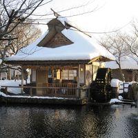 忍野→オルゴール館→白糸の滝散策
