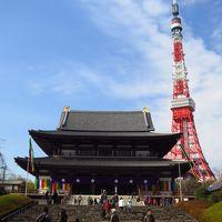 子どもと一緒に行く、澄んだ青空の下で楽しむ東京 Vol.3:東京タワーに登り、銀座をぶらつき、築地の夜を楽しんで