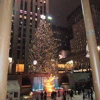 ニューヨーク・タイムズスクエアでカウントダウン! その1
