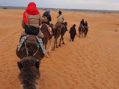 ツアーで行くモロッコ旅行2014年1月③フェズ、イフレン、エルフード、メルズーガ大砂丘、トドラ渓谷