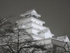 701 「会津絵ろうそくまつり」 福島県会津若松市鶴ヶ城