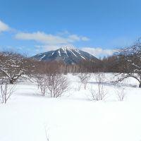 小田代ヶ原スノーシューハイキング