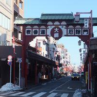 大雪などで延び延びだったウォーキング復活!今回は旧東海道〜多摩川堤防〜「川崎大師」へ。