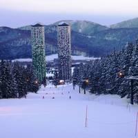 292-極寒のトマムでスキー&星野リゾートトマム宿泊