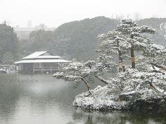 雪降る清澄庭園
