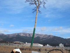 岩手県 奇跡の一本松(東日本大震災を風化させない為に・・・)ウロウロ漫遊記
