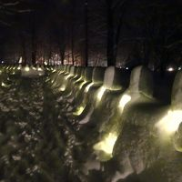 大雪の日光へ(1) 雪灯里