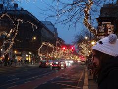 2013クリスマス~2014年始 ウィーン、ブダペスト(ハンガリー)、チェコ、ザイフェン(ドイツ)、パリ ②