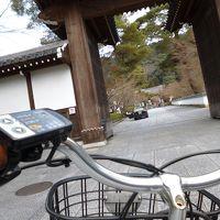 冬の京の旅 2日目♪ 初めてのチャリで京都!