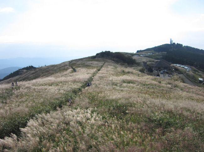 巨峰食べ放題・・それと秋を先取り・・ススキの生石高原へ日帰りバスツアーに参加しました。和歌山が初めての母と。