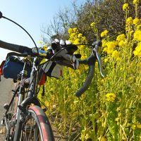 輪行風土記~春を先取り! 東京湾フェリーで渡る南房総の春花サイクリング