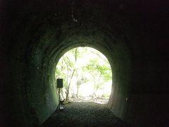 愛岐トンネルにアートの「ヒカリ」を見る
