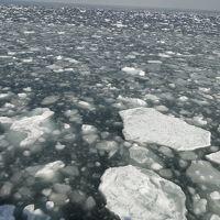 流氷を見にオホーツクへ