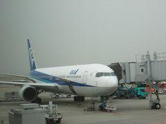 2014年3月江差線お別れの旅1(羽田空港乗継で函館へ)