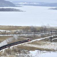 冬の北海道、道東・道央地方を巡る旅 〜霧中の釧路湿原に訪れてみた〜