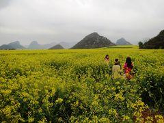 雲南から越南(ベトナム)の旅 その2 昆明から羅平、羅平の金鶏村 & 牛街