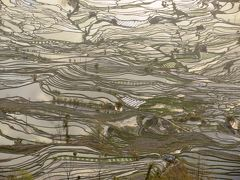 雲南から越南(ベトナム)の旅 その4 羅平~元陽、元陽の老虎嘴梯田