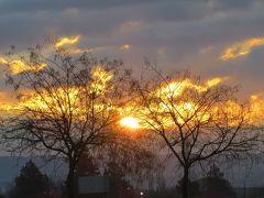 2014早春、南フランス等・4ヵ国巡り(10):2月26日(9):スペイン:ジローナ、泊まったホテル、朝焼け光景、早朝散策、ローズ・ヒップ