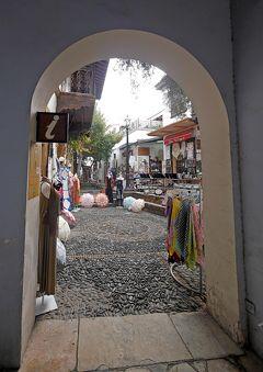 2013.12年末年始キプロス旅行14-ニコシア(Lefkosia)へ,ライキギトニアのインフォ,ファネロメニ教会,クロスポイントへ