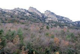 2014早春、南フランス等・4ヵ国巡り(11):2月27日(1):スペインのジローナからアンドラ公国へ、冠雪のピレネー山脈、古城、火力発電所