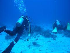 沖縄旅行記(3)ダイビング