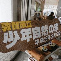 しいたけ菌打ち&生キャラメル作り(*^。^*)少年自然の家in敦賀