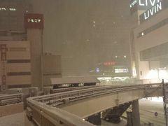 初★雪の誕生日~バルセロナからの追加日~