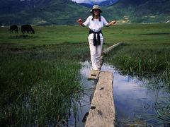 中甸(シャングリラ)の自然を満喫・そして徳欽で事件発生、闇夜の逃避行 アジア旅行記1995~1997(その3)