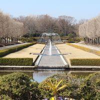 国営昭和記念公園デビュー! 広すぎる園内にびっくり とりあえず自転車でぐるっと1周しました!