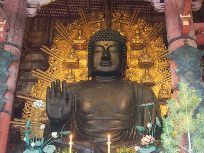 2度目の奈良県へ行ってきました<br /><br />でも、奈良の大仏は初めて☆<br />大雨でしたが…<br />しっかり堪能してきました!(^^)!