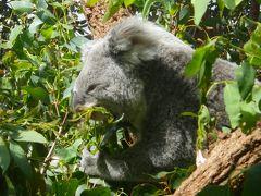 独特の進化を遂げたオーストラリアの自然を満喫しましたーー。