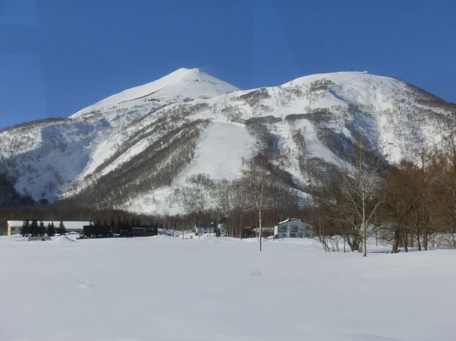 若い頃一度訪れて雪の軽さに感動したニセコヒラフ<br />25年ぶりに訪れたニセコは海外からのお客さんが増え、また新しいスキー場もできて更に魅力のあるリゾートになっていた<br />雪はこの時期なので期待していなかったのですが時期ハズレの寒波襲来で新雪もたっぷり<br />毎年訪れるスキーヤーが多いニセコ、やっぱり魅力たっぷりのスキーリゾートだと納得しました