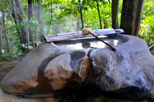 (思いがけず)早春の相模路をぶらりゆく旅。<br /><br />幕山のふもとに広がる「湯河原梅林」での観梅を終えた後、万葉の里・湯河原温泉へ向かいます。。。<br /><br />神奈川県の西端に位置する湯河原温泉は、かの『万葉集』にもその情景が詠まれたというくらいにその歴史が古く、また明治以降も多くの文人墨客が滞在し、今もその閑雅な雰囲気が残る温泉街です。<br /><br />まずは湯河原駅近くの歴史ある寺社を巡り、1年中変わらぬ水量を誇る滝を眺め、木々の合間にこの地ゆかりの文学者の作品を紹介した小径を歩き、そして最後に滔々と湧き出る湯に浸かり……。<br />これぞ王道の温泉街の旅・「湯河原温泉そぞろ歩き」となりました♪<br /><br />【旅の行程】<br />・湯河原駅 ~ 城願寺 ~ 五所神社 ~ 不動滝 ~ こごめの湯 ~ 万葉公園 ~ 独歩の湯 ~ 湯河原温泉 源泉かけ流しの宿 湯楽(泊)<br /><br />【(思いがけず)早春の相模路をぶらりゆく旅】<br />・旅行記その1~4,000本の梅花が春を告げる…「2014 湯河原梅林・梅の宴」へ~<br /> http://4travel.jp/travelogue/10867509<br />・旅行記その3~関東の覇者・北条氏5代の居城 小田原城登城記~<br /> http://4travel.jp/travelogue/10883874<br /><br /><br />【温泉街そぞろ歩き】<br />・雲翳の妙高山と赤倉温泉街そぞろ歩き(新潟県妙高市)<br /> http://4travel.jp/travelogue/10706639<br />・渓谷美に恵まれた地・水上温泉そぞろ歩き(群馬県利根郡みなかみ町)<br /> http://4travel.jp/travelogue/10695302 <br />・日本三名泉のひとつ・草津温泉そぞろ歩き(群馬県吾妻郡草津町)<br /> http://4travel.jp/travelogue/10761681<br />・ダムに沈みゆく幻の温泉街・川原湯温泉そぞろ歩き(群馬県吾妻郡長野原町)<br /> http://4travel.jp/travelogue/10763120<br />・深緑に包まれた河鹿橋と上州の名湯・伊香保温泉そぞろ歩き(群馬県渋川市)<br /> http://4travel.jp/travelogue/10814353 <br />・修善寺温泉そぞろ歩き(静岡県伊豆市)<br /> http://4travel.jp/travelogue/10604700