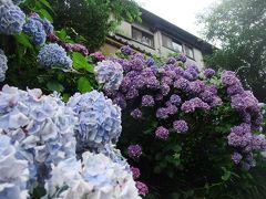 2011.7 鎌倉~紫陽花・腰越、極楽寺他