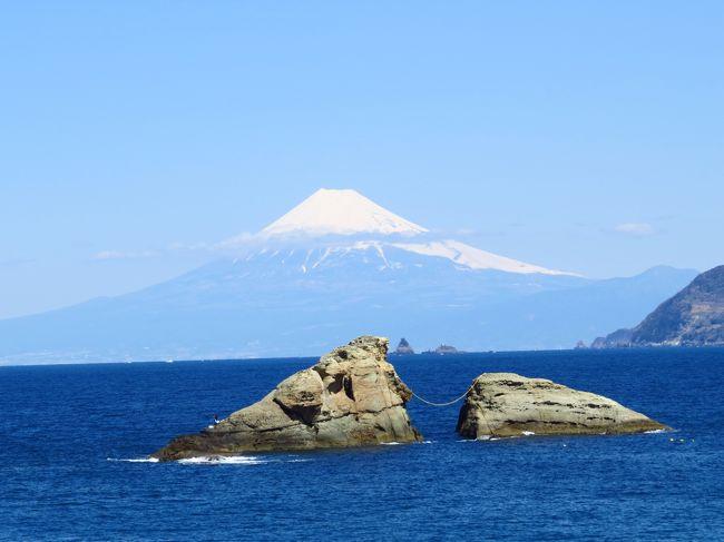 3月21日から23日まで2泊3日で、西伊豆と三島の旅行をしました。<br /><br />初日は、三島からレンタカーを借りて、西伊豆を堂ヶ島までドライブ。<br /><br />富士見スポットに立ち寄り、富士山の絶景を堪能し。。。<br /><br />三四郎島では、潮の満ち引きに時の立つのを忘れ。。。<br /><br />大田子海岸では夕陽に感動し。。。<br /><br />堂ヶ島・ニュー銀水に宿泊しました。<br /><br />2日目の本日は、<br /><br />堂ヶ島公園を観光し。。。<br /><br />彫刻ライン、雲見海岸、奥石廊崎、石廊崎と絶景を楽しみつつ南下し。。。<br /><br />日野の菜の花畑で癒され。。。<br /><br />ドーミーイン三島に宿泊しました。<br /><br />2日目の旅行記です。<br /><br />