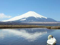 富士山に抱かれて