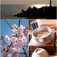 ワンコと桜を(2日目)@富戸港〜河津