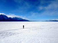 ユーコン 極北&オーロラ(2/全5): ホワイトホース(先住民, 博物館, 蒸気船)→ クルアニ国立公園