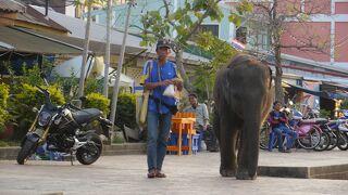 タイ2014ノンカーイ