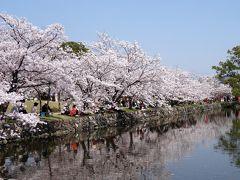 小城公園訪問記 in 佐賀 (桜を求めて)