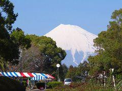 富士市・・・広見公園の桜祭りの前に。