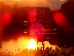 ハウステンボスリゾート  HTB  早朝のお散歩 チューリップ咲き乱れる2014春