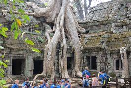 2014春、カンボジア旅行記2(37):3月22日(8):シェムリアップ、タ・プロム遺跡、ガジュマルの古木、中央祠堂、回廊、周壁、修復工事現場