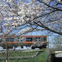 浦和くらしの博物館民家園と見沼代用水の春