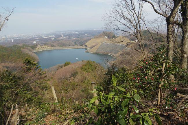 城山かたくりの里で、かたくりの花をはじめ種々の花を楽しんだ後は、城山湖へハイキングしてきました。先週に続いて富士山初登頂をめざしてトレーニングをしたいと思っていたので、ちょうどいい!<br /><br />ネットでよく調べ、グーグルマップを見て、かたくりの里においてあるMAPももらって、案内板も良く見て歩いたはずが、最後で大コケ!
