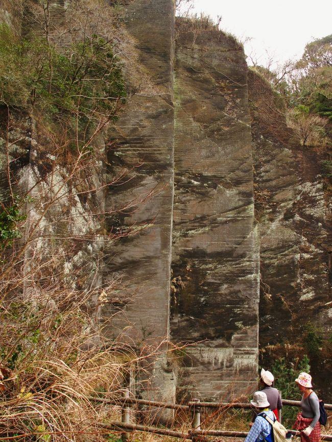 房 州 石<br /> 日本列島に広く堆積している新第三紀層の凝灰岩や凝灰質砂岩は,柔らかくて整形し易く,耐火性があるので,家屋や土蔵の塀,壁,門柱などの建築石材として盛んに利用されました。その代表が栃木県の大谷石で,町を歩くと石塀に用いられているのをよく目にします。ここで紹介する千葉県の房州石も新第三紀層産の建築石材です。<br /> 房州石は,房総半島西部から切り出された凝灰質の砂岩〜細礫岩石材の総称です。採石場は富津市から鋸南町にかけて点在し,その地名をとって,元名石(鋸南町元名),金谷石(富津市金谷),天神山石(富津市海良),高宕石(富津市高宕山)などと呼ばれていました。そのうち最も質の良いものが、鋸山の採石場から稼行された金谷石です。房州石の生産は、江戸末期安政年間に伊豆の石切職人によって始まったと言われています。明治時代には大量に稼行され、京浜方面へ盛んに移出されました。しかし大正時代になるとセメントに,戦後には大谷石にとって変わられ,現在ではまったく採石されていません。<br /> 鋸山の採石場は,現在では日本寺境内の一部となっているので,見学に行ってきました。日本寺を訪れるには,鋸山ロープウェイ,鋸山観光自動車道,鋸山登山自動車道の三通りがあります。車で行くなら後二者が便利でしょうが,房州石について知りたければロープウェイに乗って,山頂駅にある房州石の展示室を見学して予備知識を得た上で,日本寺を訪問しましょう。<br /> ロープウエィ山頂駅から境内へと登る途上に石切場の跡があります。その跡を見ると,<br />房州石はお豆腐を切り取るように直角に切り出されたことが良く分かります。<br /> 境内に入ると,切り取ったその壁面を利用して百尺観音像や大仏像が彫刻され,また自然石を利用して千五百羅漢などの石像があちこちに彫られていることが分かります。とは言え,ここでの一番の見所は何と言っても「地獄のぞき」でしょう。オーバハングした「地獄のぞき」に立つと,確かに足もすくむ思いです。<br /> ( http://chishitsu-100kei.world.coocan.jp/page063.htmlより引用)<br />http://yamaiga.com/road/nokogiri/main.html<br /><br />鋸山石切場・車力道<br />標高329mの鋸山は金谷石(房州石)の産地として知られた。<br />石の切り出しは江戸時代に始まり、明治・大正期には盛んに関東一円に出荷されたが、昭和50年代でその歴史を閉じた。<br />車力道は石切職人が木製の荷車に石材を載せ、山から運び出した道である。<br />鋸山ロープウェーの山頂駅の会館には、石切りの歴史をパネルで展示した「石切りコーナー」が設けられている。<br />( http://www.city.futtsu.lg.jp/0000000576.html より引用)<br /><br />鋸山(のこぎりやま)は、房総半島の南部、千葉県安房郡鋸南町と富津市の境に位置する山。<br />標高は329.4m。 房総丘陵の一部分を占めるが、内陸部よりも海岸線(東京湾)に近い。山は凝灰岩から成り、建築などの資材として適している。そのため古くは房州石と呼ばれ、良質石材の産地として、江戸時代から盛んに採石が行われた(石切場跡は現在も残存する)。結果、露出した山肌の岩が鋸の歯状に見えることからこの名で呼ばれるようになった。<br />採取された石材は、幕末から明治、大正、昭和にかけて、主に横須賀軍港や横浜の港湾設備、東京湾要塞の資材として利用された。また、靖国神社や早稲田大学の構内にも利用されている。自然保護規制の強化により昭和57年を最後に採石を終了し、現在鋸山は観光資源として利用されている。<br />正式な名称は乾坤山(けんこんざん)という。眺望は素晴らしく、東京湾一帯から伊豆大島まで見渡すことができる。また近隣の安房三名山「富山」「御殿山」「伊予ヶ岳」を臨むこともできる。<br />(フリー百科事典『ウィキペディア(Wikipedia)』より引用)<br /><br />鋸山については・・<br />http://www.nihonji.jp/<br />http://www.mt-nokogiri.co.jp/pc/p010000.php<br /><br />京成バスシステムについては・・<br />http://www.keisei-bus-system.co.jp/pc/p010000.php