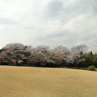 龍泉寺・愛知県森林公園2014.4.2